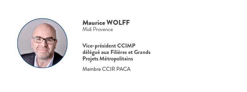 maurice wolff commission cciamp